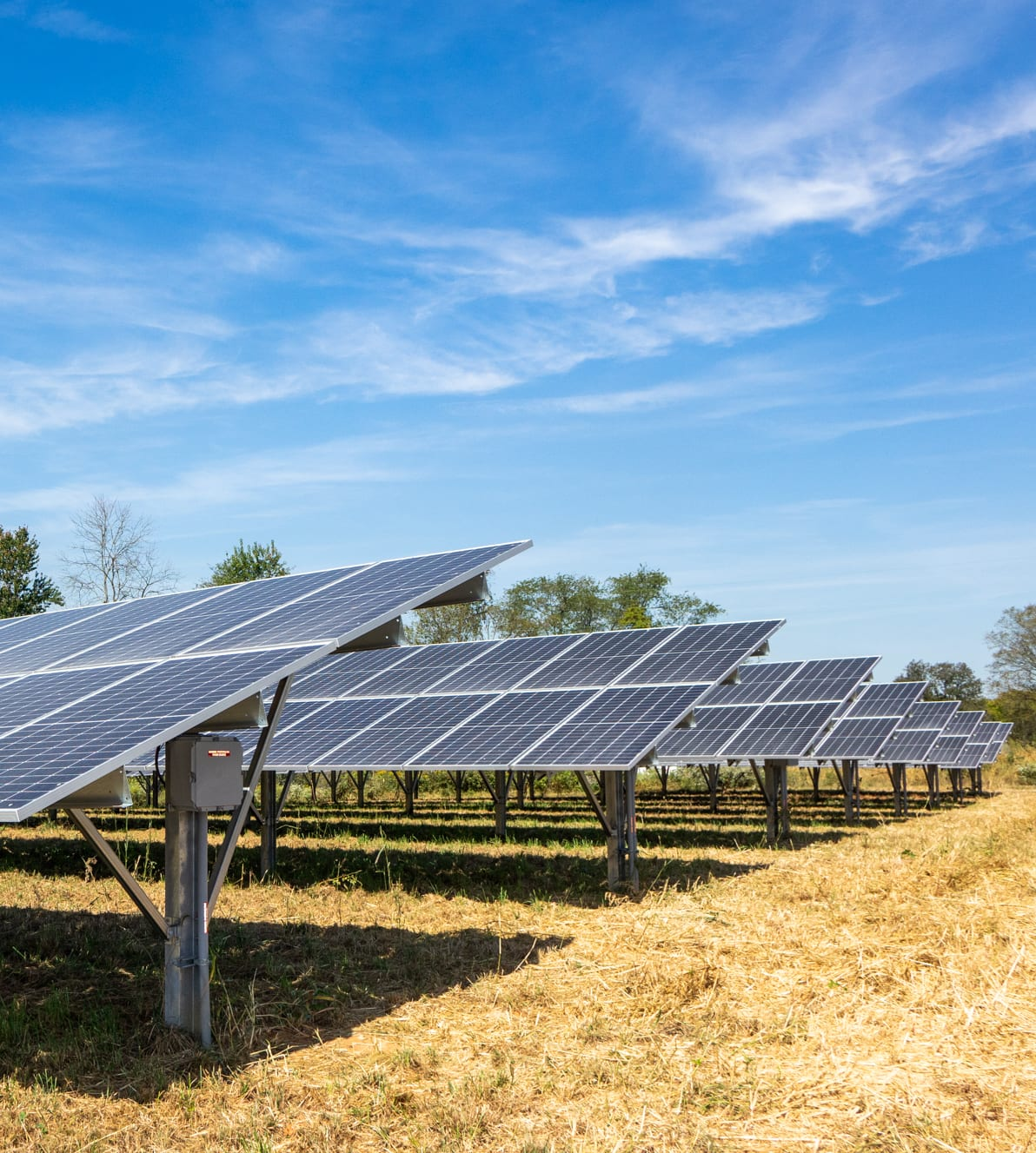 Gorgeous ground mount solar array agricultural land